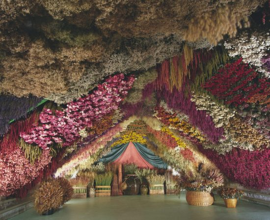 DRIED FLOWERS CAVE
